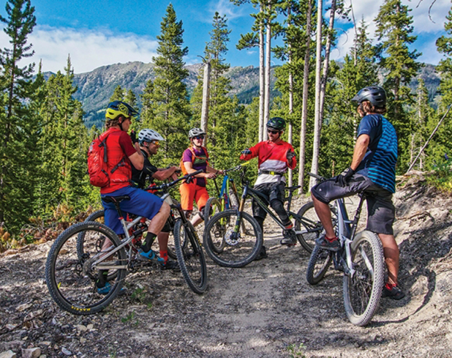 Spotlight on Mountain Biking