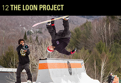 12 the loon project